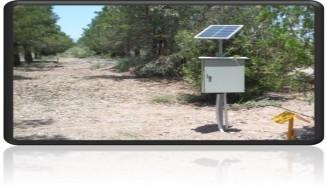 پروژه مدل هکتاری فولاد آلیاژی یزد